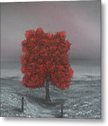 Wrapped In Red Metal Print