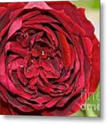 Wrapped Red Metal Print