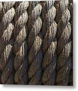 Wrapped Up Tight Metal Print