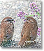 Wren Bird Sweethearts Metal Print
