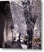 Wynwood Treet Shadow Metal Print