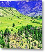 Wyoming Hillside Metal Print