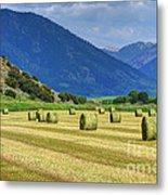 Wyoming Mountain Hay Farm Metal Print