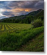 Wyoming Pastures Metal Print