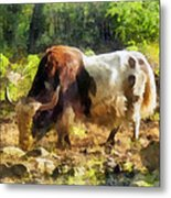 Yak Having A Snack Metal Print