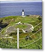Yaquina Lighthouse From Salal Hill Trail  Metal Print