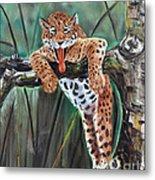Yawning Leopard Metal Print