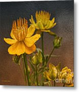 Yellow Aged Floral Metal Print