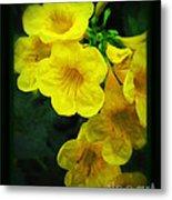 Yellow - Amarillo - Jaune Metal Print