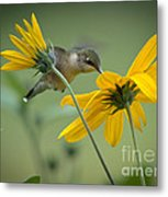 Yellow And Green Metal Print