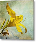Yellow Asiatic Lilly Iv Metal Print