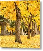 Yellow Autumn Wonderland Metal Print