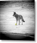 Yellow Ball Metal Print