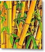 Yellow Bamboo Metal Print
