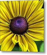 Yellow Beauty Metal Print
