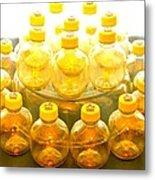 Yellow Bottle Metal Print