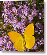 Yellow Butterfly On Pink Flowers Metal Print