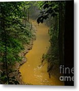 Hidden Cedar Sink Creek Metal Print
