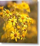 Yellow Countryside Metal Print