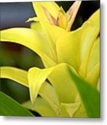 Yellow Cream Tropical Metal Print