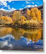 Yellow Fall Reflections Metal Print