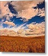 Yellow Field Dramatic Sky Metal Print