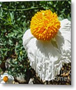 Yellow Flower - 02 Metal Print by Gregory Dyer