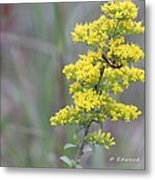 Yellow Flower For Yellow Bug Metal Print