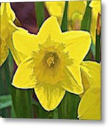 Yellow Flower Iris Metal Print