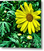 Yellow Flower Of Spring Metal Print