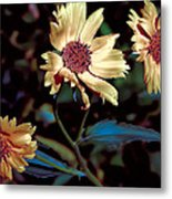 Yellow Flower Viii Metal Print