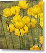 Yellow Flowers With Texture Metal Print