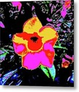 Yellow Front 5a Metal Print