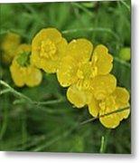 Yellow Glow Metal Print