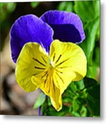 Yellow Heart Metal Print