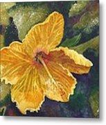 Yellow Hibiscus Metal Print