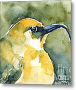 'akiapola'au - Hawaiian Yellow Honeycreeper Metal Print