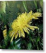 Yellow In The Rain Metal Print