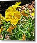 Yellow Flower In The Sun Metal Print