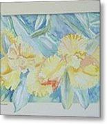 Yellow Iris' Metal Print