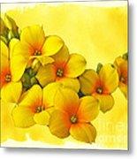 Yellow Kalanchoe - Succulent Sunshine Metal Print