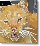 Yellow Kitty Metal Print