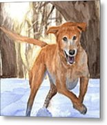 Yellow Lab Dog In Snow Watercolor Portrait Metal Print