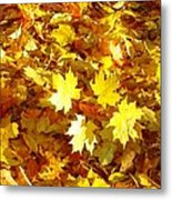 Yellow Leaves Metal Print
