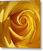 Yellow Light Metal Print by Etti PALITZ