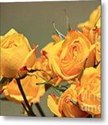 Yellow Mini Rose's Closeup Metal Print