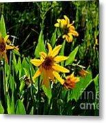 Yellow Mountain Flowers Metal Print
