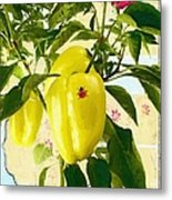 Yellow Pepper Metal Print