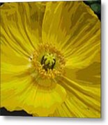 Yellow Poppy Flower Metal Print