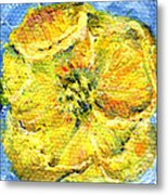 Yellow Poppy Metal Print
